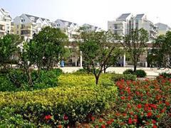 江汉区  常青花园3村 2室1厅1卫 92㎡