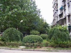 常青花园 三层复式楼 5房2厅,武汉东西湖区常青花园东西湖区学府北路65号二手房5室 - 亿房网