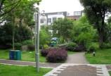 当代国际花园