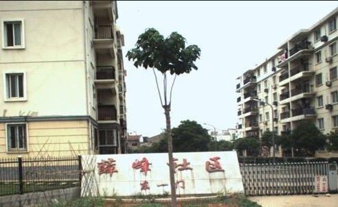 网站导航 武汉二手房导航 沌口 沌口经济开发区 薛峰社区