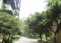 江汉区 商检局宿舍 中装 2室2厅1卫