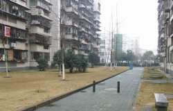 常青花园1村