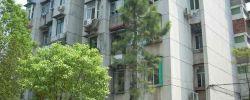 青山区 建二 钢花新村121街 3室1厅1卫  82.3㎡