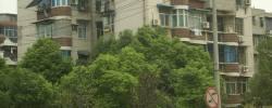 青山区 建二 钢花新村114街 1室1厅1卫 49㎡