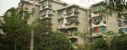青山区 红钢城 钢花新村115街 2室1厅1卫 60㎡