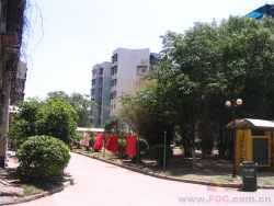 常青花园12村