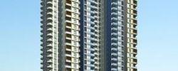 中南国际城D座